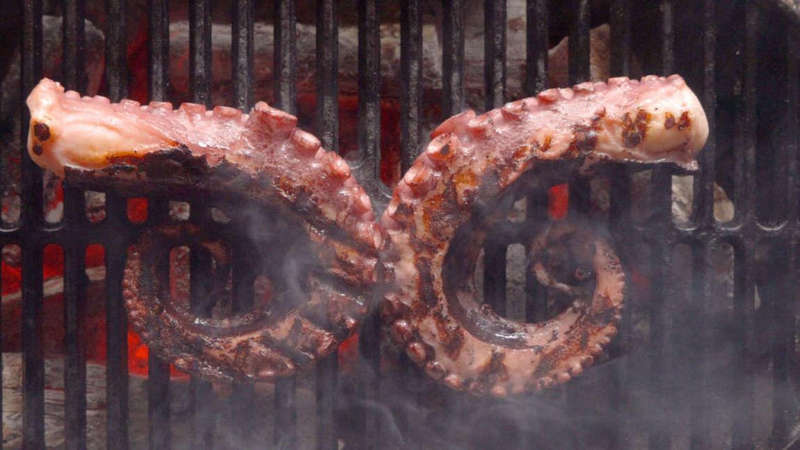 Grilovaná sous vide chobotnice